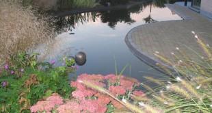 Aanleg vijver en zwemvijver