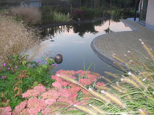 Aanleg vijver en zwemvijver - Tuin decoratie buitenkant ...
