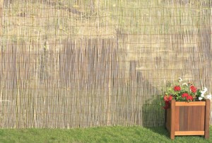 ecran-bambous Tuinafsluitingen Poorten Schermen Brico Tuinafsluitingen, poorten, schermen bij Brico ecran bambous