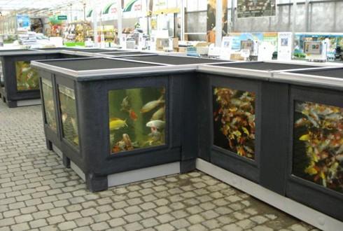 Vijver - De vissen bij Groendekor Vijver – De vissen bij Groendekor Amenagement Bassin Poisson Exterieur 490x330
