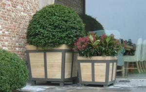 bac een houten bloem Tuinverlichting en gevelverlichting Tuinverlichting en gevelverlichting OUT STANDING 300x189 Tuinverlichting en gevelverlichting Tuinverlichting en gevelverlichting OUT STANDING 300x189