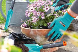 gardena groendekor gereedschappen bij groendekor tuincentrum Gereedschappen bij Groendekor gardena groendekor 310x205
