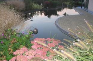 Aanleg vijver en zwemvijver  Grondwerken, Opritten en Parkings door J. De Cock Aanleg vijver en zwemvijver 310x205