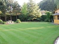 Wat is de ideale hoogte van uw gras ? ideal gras